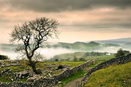 misty-shot-yorkshire-dales-settle